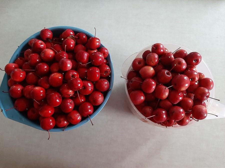 Konfitura z rajskich jabłuszek