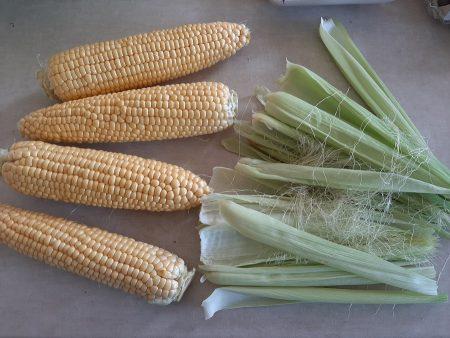 Jak ugotować kukurydzę, aby była smaczna