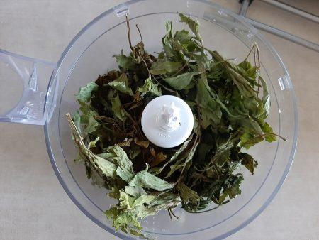 Domowa vegeta